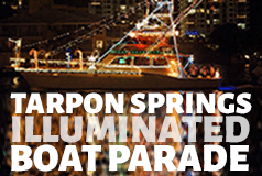 Illuminated Boat Parade