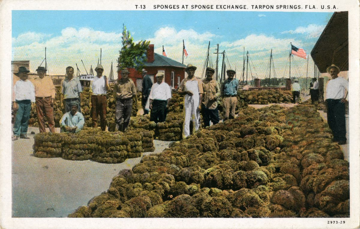 Tarpon Springs Sponge Exchange