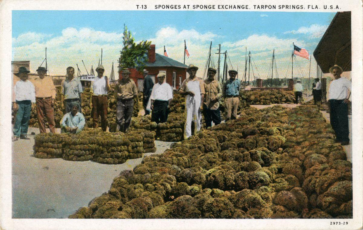 Tarpon Springs Sponge Exchange